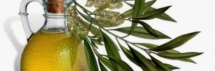 Эфирное масло чайного дерева - природное средство против простуд