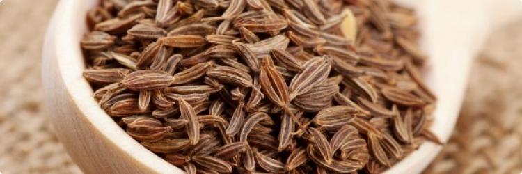Полезные свойства тмина обыкновенного