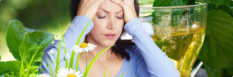10 растений, способных справиться с мигренью