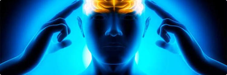 Натуральные препараты, улучшающие концентрацию внимания