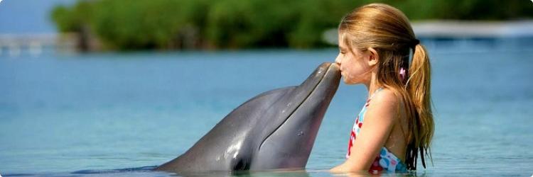 Дельфинотерапия для детей: наперегонки с волной