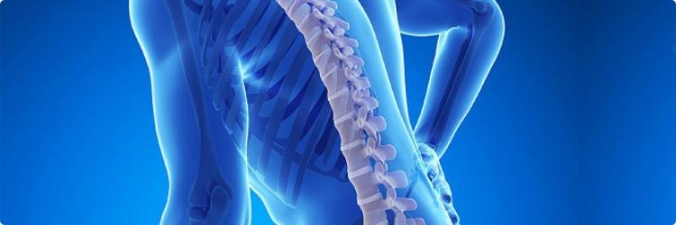 Остеопороз: лечение народными средствами