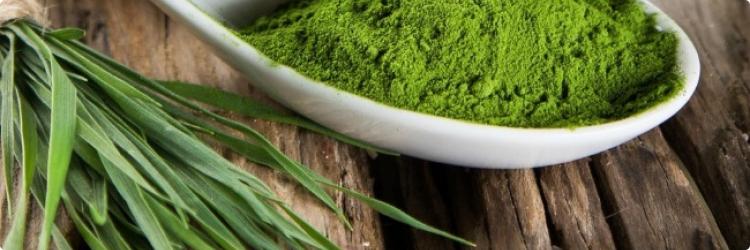 Спирулина: зеленый суперпродукт со многими преимуществами для здоровья