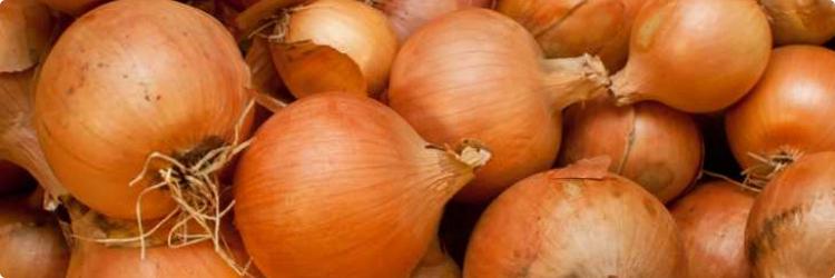 Польза для здоровья от использования лука