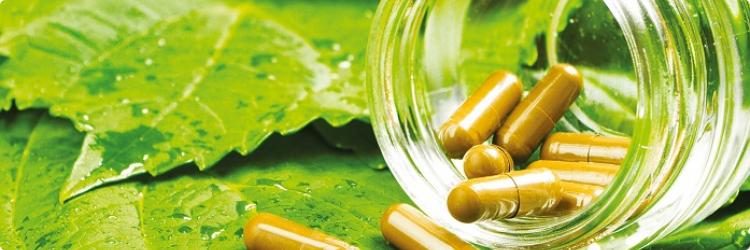 Совместный прием травяных сборов и медикаментов