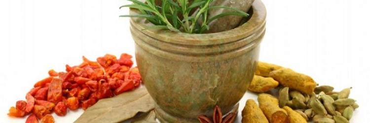 Злокачественные опухоли. Опыт и методы борьбы, рецепты, травы, чай, бальзам