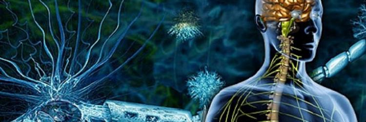 Альтернативные методы лечения при рассеянном склерозе