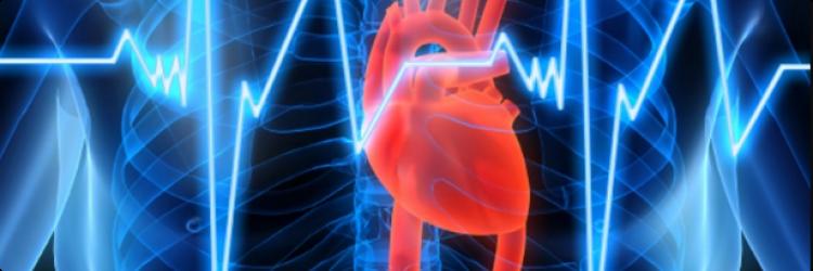 Гомеопатия и сердечно-сосудистые заболевания