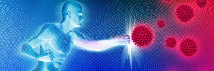 Функции и типы иммунной системы