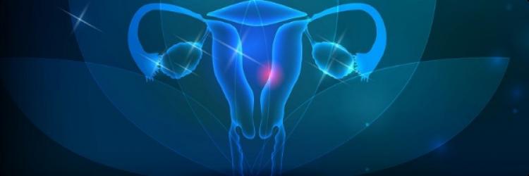 Гомеопатия и гинекологические заболевания