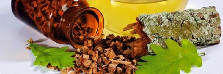 Лечебные свойства дубовой коры