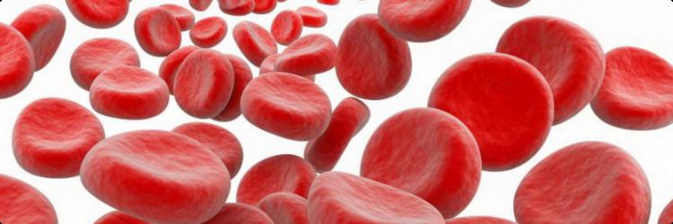 Причины низкого гемоглобина, симптомы и принципы лечения