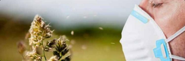 Причины появления перекрёстной аллергии