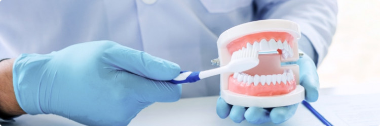 Профессиональная гигиена полости рта - залог здоровых зубов