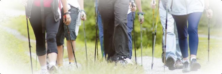 Что такое скандинавская ходьба и какая от нее польза?