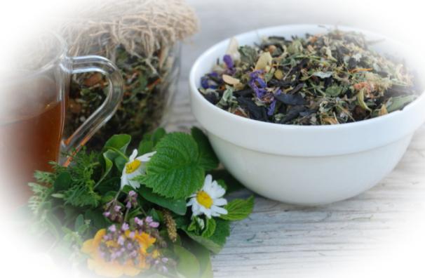 Действие и приём травяных сборов для похудения