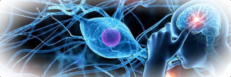 Нервные болезни: с чем они связаны и каким образом протекают.