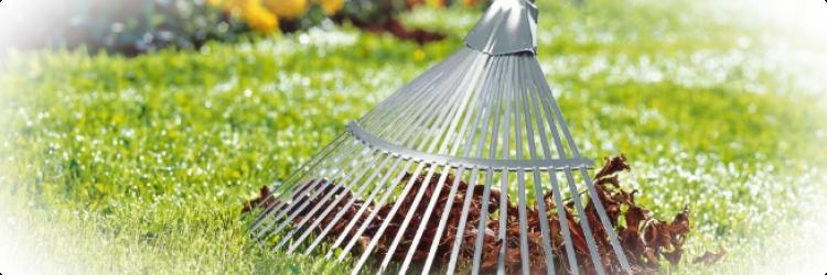 Уход за газоном осенью – как нужно подготовить его к зиме