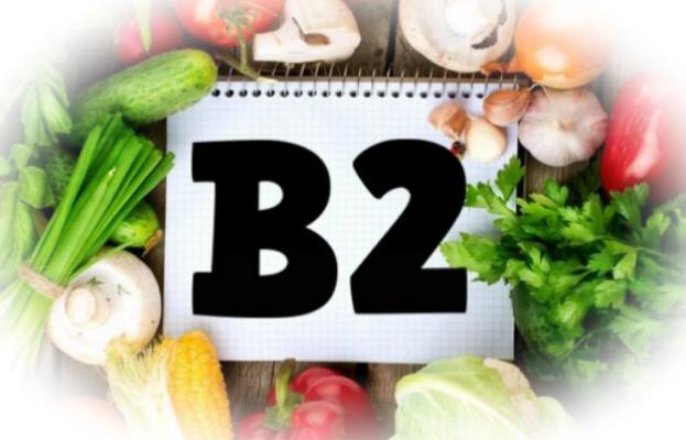 Витамин B2: свойства и роль в организме рибофлавина