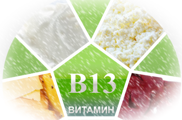 Всё о витамине B13