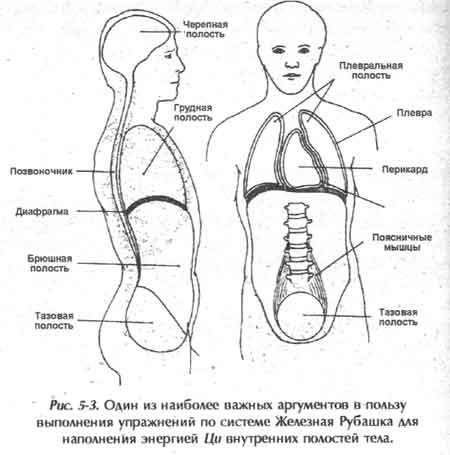 ключения меридианы тела.