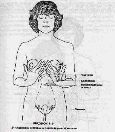 Даосский сексуальный массаж avi