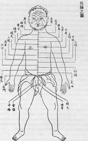Схема акупунктурных точек на Управляющем Меридиане, созданная во времена китайской династии Мин (1368—1644) .